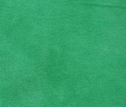Jade Green Velour Suede Leather Half Skin